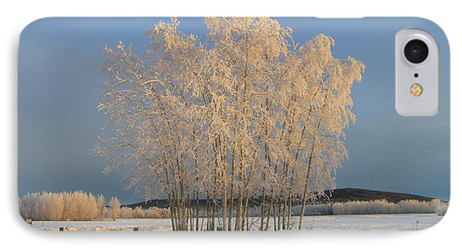 Snow IPhone 7 Case featuring the photograph Creamer Field by Louise Magno