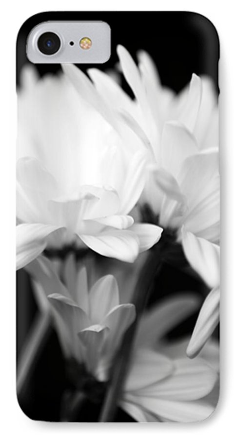 Floral IPhone 7 Case featuring the photograph Daises In Black And White by Ayesha Lakes