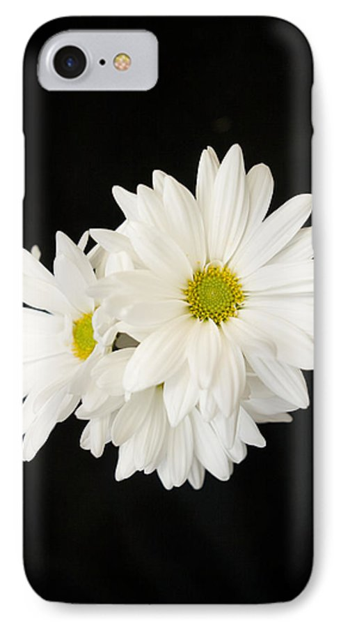 Floral IPhone 7 Case featuring the photograph Daisies by Ayesha Lakes