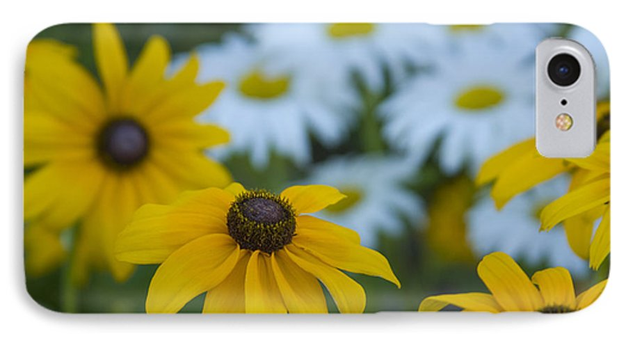 Daisy IPhone 7 Case featuring the photograph Daisies by Idaho Scenic Images Linda Lantzy