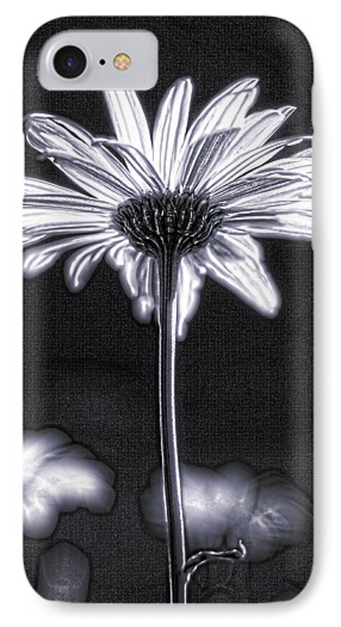 Black & White IPhone 7 Case featuring the photograph Daisy by Tony Cordoza