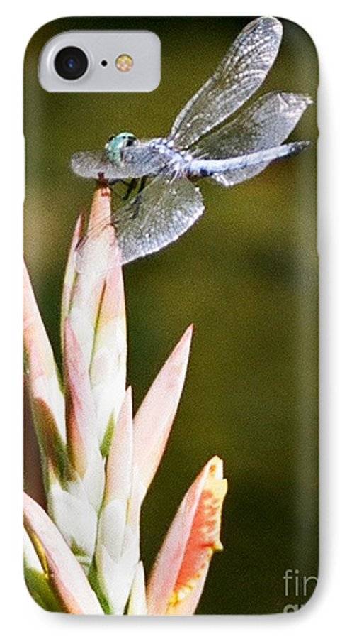 Dragonfly IPhone 7 Case featuring the photograph Damselfly by Dean Triolo