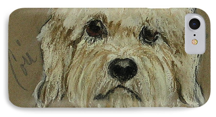 Dandie Dinmont Terrier IPhone 7 Case featuring the drawing Dandie by Cori Solomon
