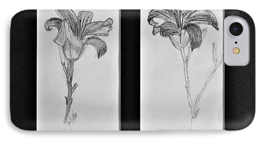 Pencil Sketches IPhone 7 Case featuring the drawing Day Lilies by Peggy King
