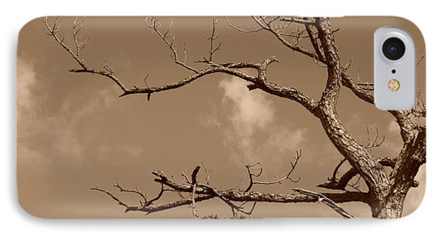 Sepia IPhone 7 Case featuring the photograph Dead Wood by Rob Hans