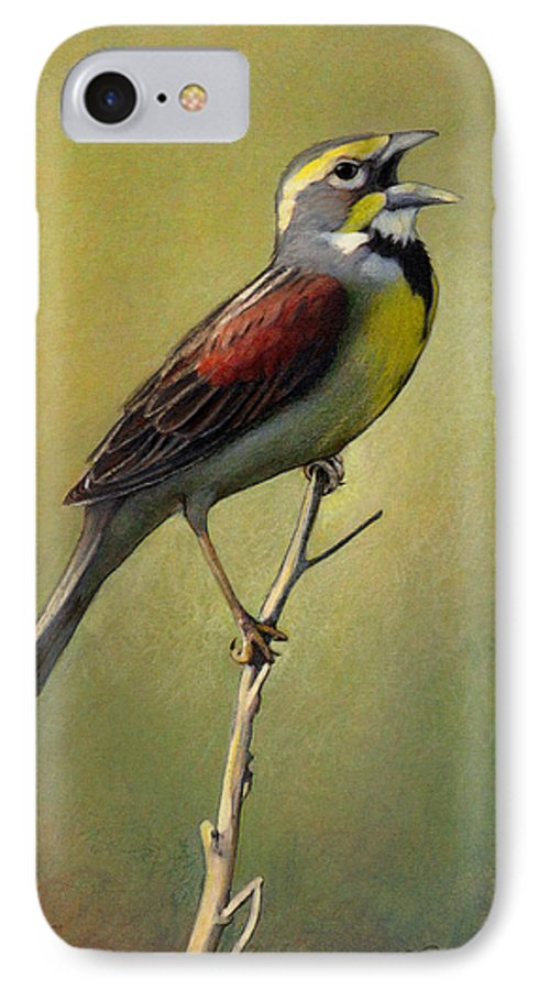 Birds IPhone 7 Case featuring the drawing Dickcissel Summer Song by Bruce Morrison