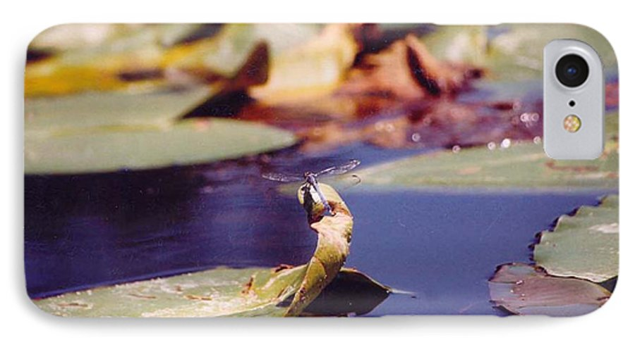 Insect IPhone 7 Case featuring the photograph Dragon Fly by Margaret Fortunato