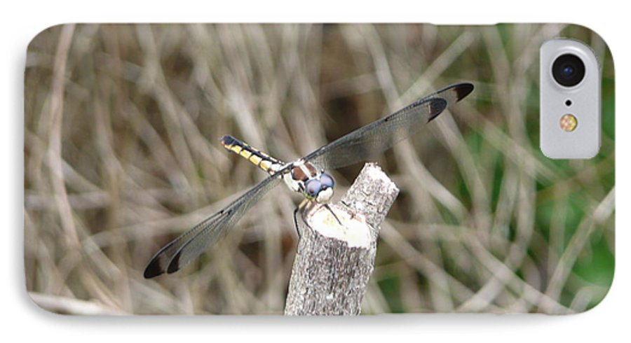 Wildlife IPhone 7 Case featuring the photograph Dragonfly I by Kathy Schumann