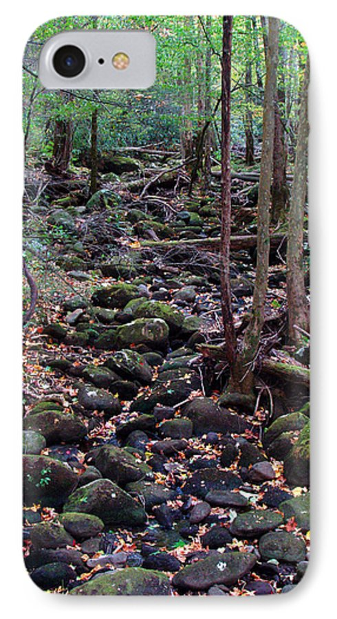 River IPhone 7 Case featuring the photograph Dry River Bed- Autumn by Nancy Mueller