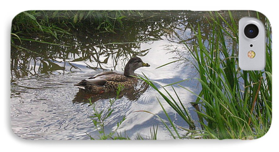 Duck IPhone 7 Case featuring the photograph Duck Swimming In Stream by Melissa Parks