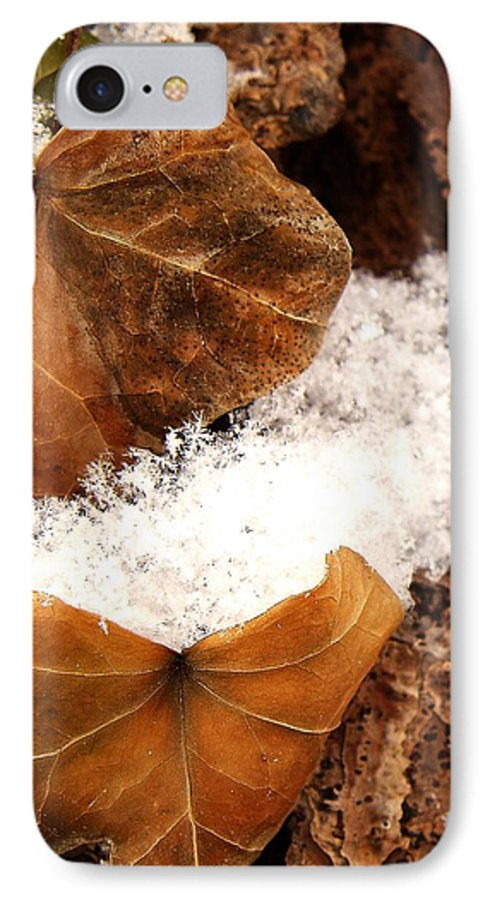Fall IPhone 7 Case featuring the photograph Fall And Winter by Gaby Swanson