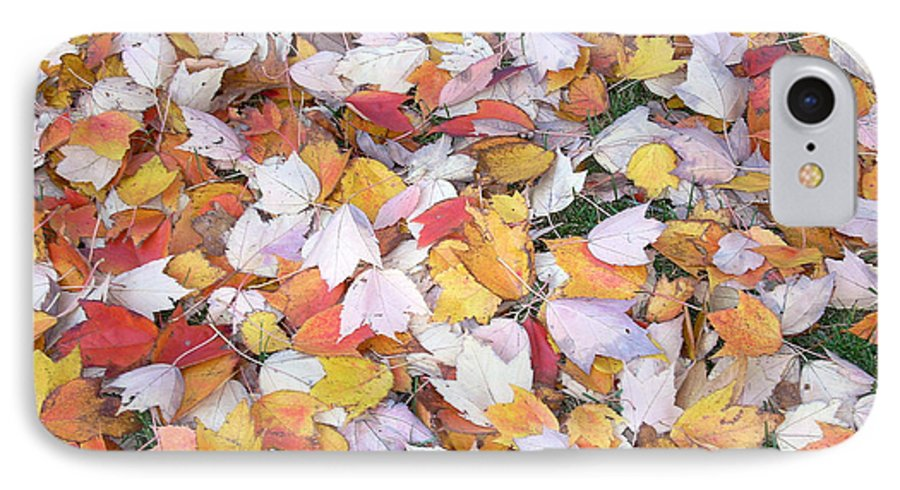 Photography Fall Autum Leaves IPhone 7 Case featuring the photograph Fallen Fantasy by Karin Dawn Kelshall- Best