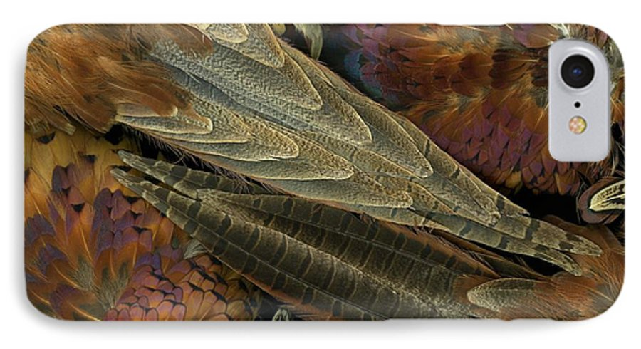 Pheasant IPhone 7 Case featuring the photograph Featherdance by Christian Slanec