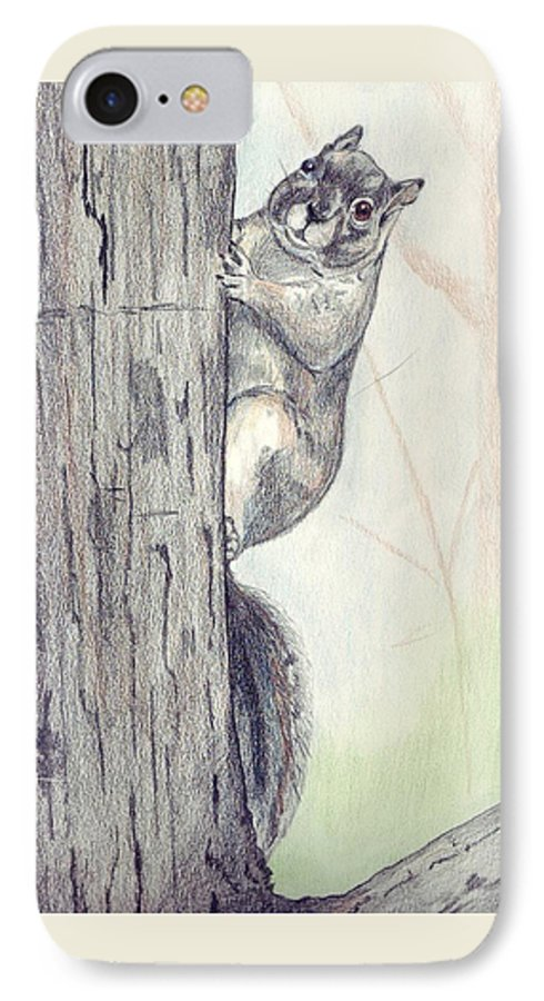 Color Pencil IPhone 7 Case featuring the drawing Feeder Raider by Debra Sandstrom