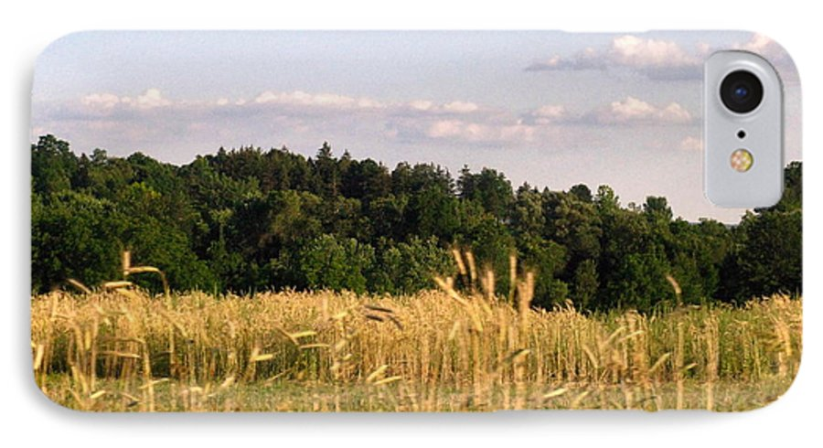 Field IPhone 7 Case featuring the photograph Fields Of Grain by Rhonda Barrett