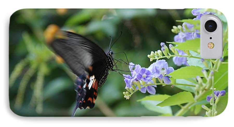 Butterfly IPhone 7 Case featuring the photograph Fly In Butterfly by Shelley Jones