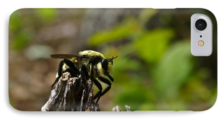 Fly IPhone 7 Case featuring the photograph Fly On Mountain by Douglas Barnett