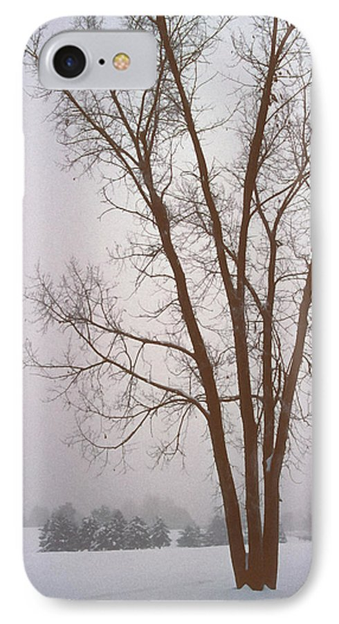 Nature IPhone 7 Case featuring the photograph Foggy Morning Landscape 13 by Steve Ohlsen