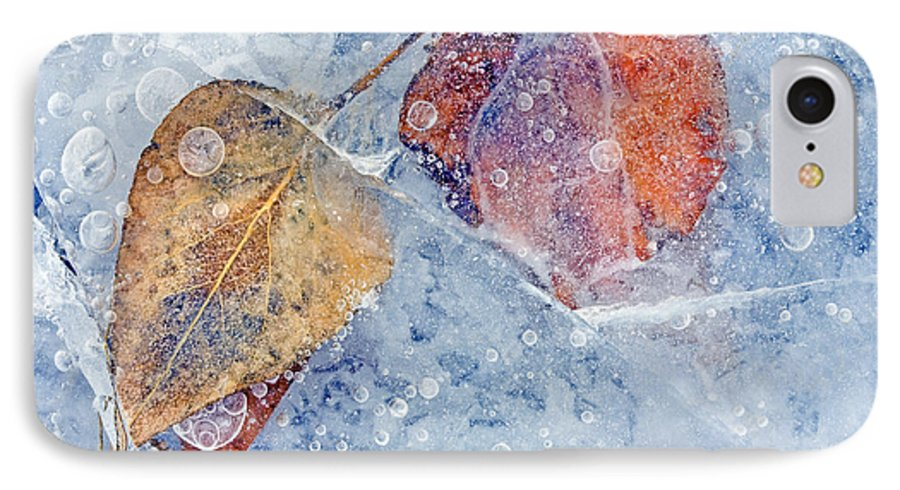 Ice IPhone 7 Case featuring the photograph Fractured Seasons by Mike Dawson