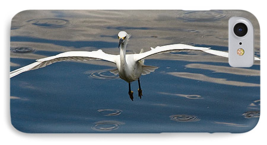 Snowy Egret IPhone 7 Case featuring the photograph Gear Down by Christopher Holmes