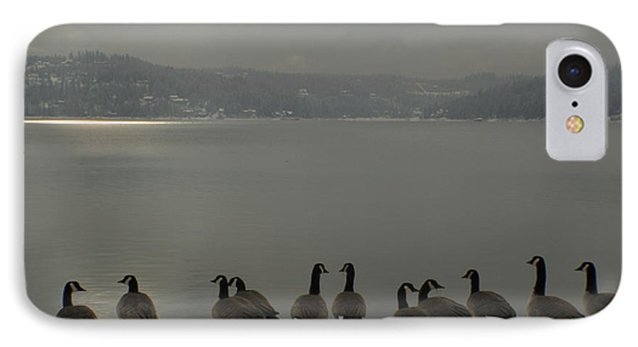 Geese IPhone 7 Case featuring the photograph Geese On The Edge by Idaho Scenic Images Linda Lantzy