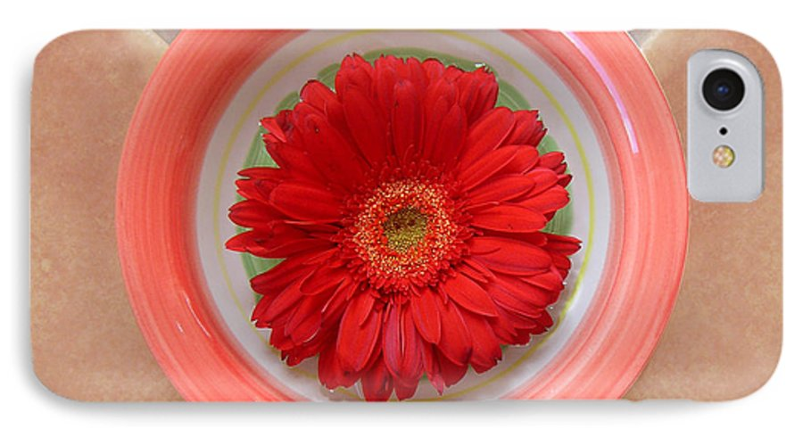 Nature IPhone 7 Case featuring the photograph Gerbera Daisy - Bowled On Tile by Lucyna A M Green