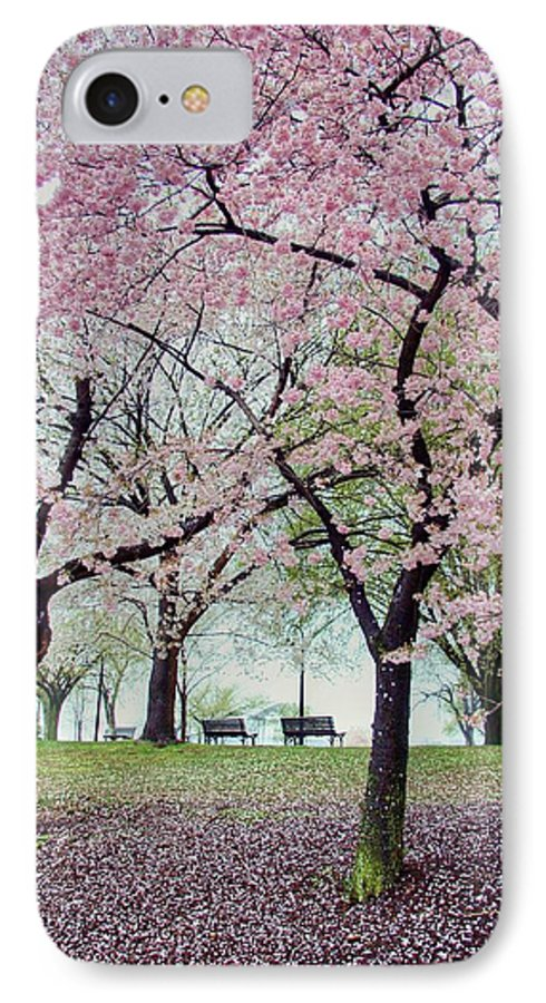 Cherry Blossoms IPhone 7 Case featuring the photograph Gifts by Mitch Cat