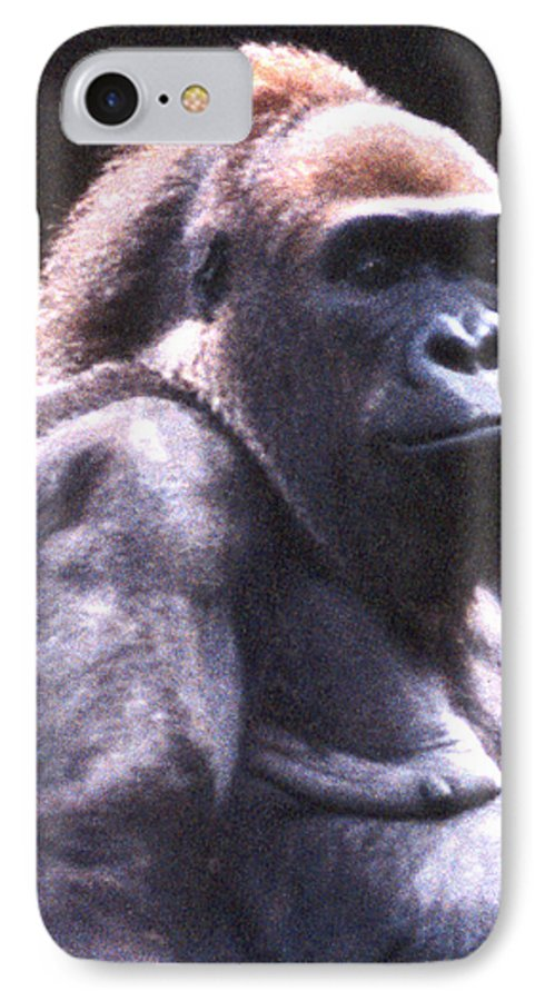 Gorilla IPhone 7 Case featuring the photograph Gorilla by Steve Karol