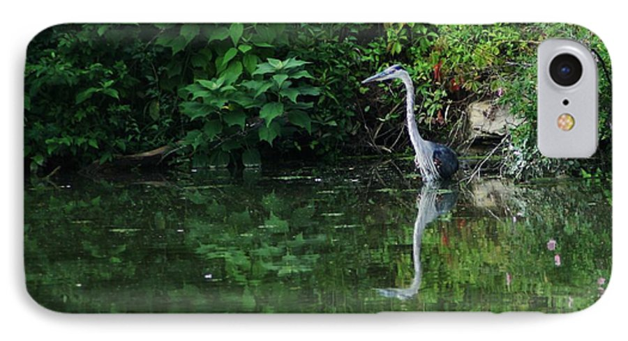 Lanscape Water Bird Crane Heron Blue Green Flowers Great Photograph IPhone 7 Case featuring the photograph Great Blue Heron Hunting Fish by Dawn Downour