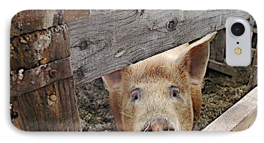 Barnpig IPhone 7 Case featuring the photograph Green Acres by Faith Harron Boudreau