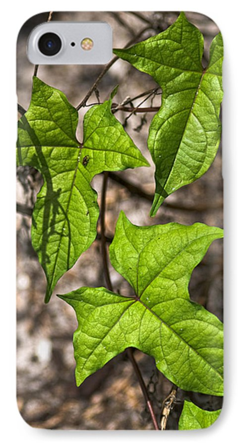 Green IPhone 7 Case featuring the photograph Green Arrowheads by Christopher Holmes