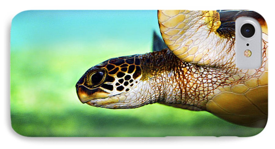 Green IPhone 7 Case featuring the photograph Green Sea Turtle by Marilyn Hunt