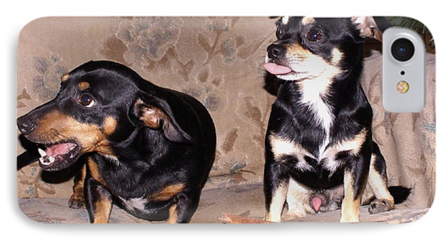Dogs IPhone 7 Case featuring the photograph He's All Mine by Debbie May