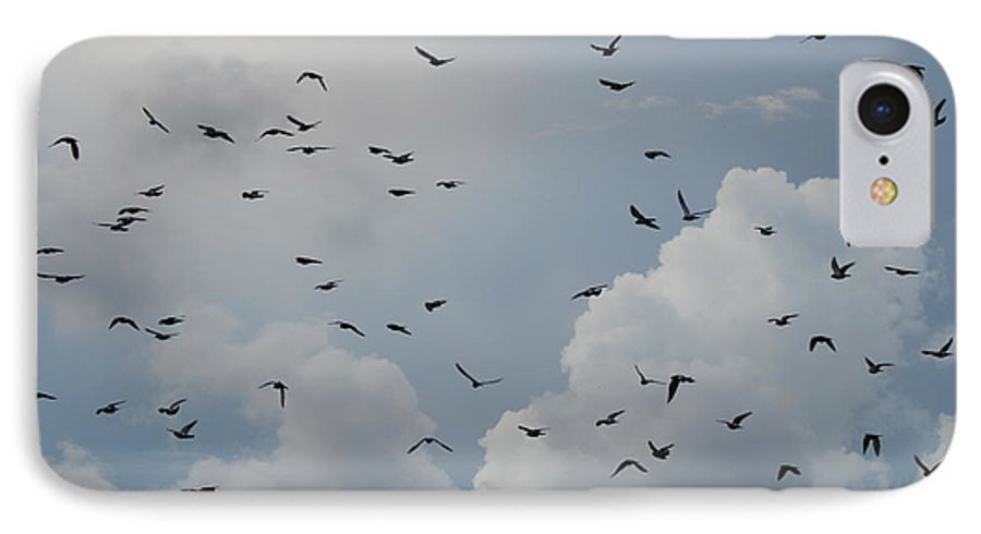 Birds IPhone 7 Case featuring the photograph In Flight by Rob Hans