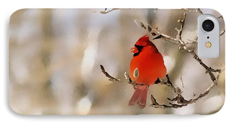 Cardinal IPhone 7 Case featuring the photograph In Red by Gaby Swanson
