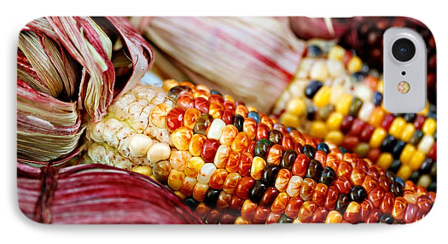 Corn IPhone 7 Case featuring the photograph Indian Corn by Marilyn Hunt