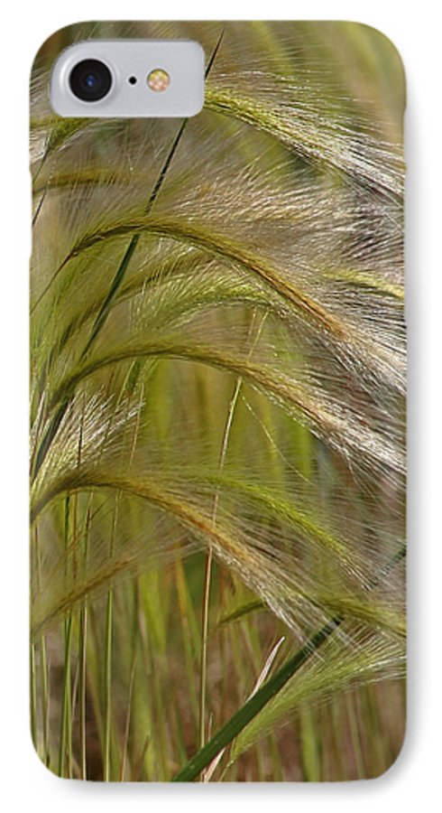 Grass IPhone 7 Case featuring the photograph Indiangrass Swaying Softly With The Wind by Christine Till