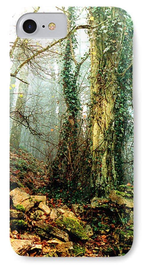 Ivy IPhone 7 Case featuring the photograph Ivy In The Woods by Nancy Mueller