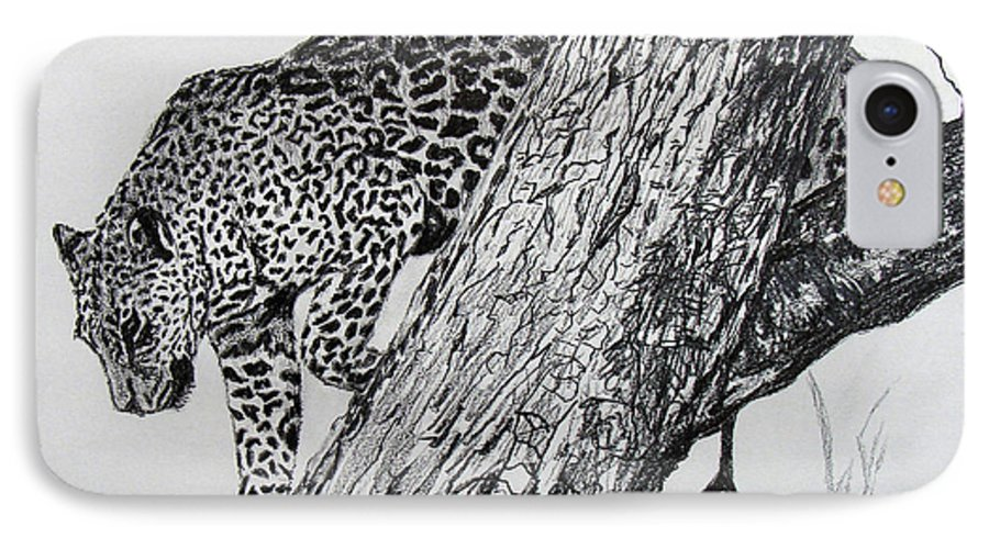 Original Drawing IPhone 7 Case featuring the drawing Jaquar In Tree by Stan Hamilton