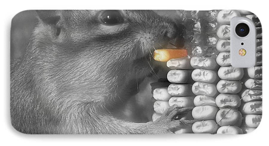 Chipmunk IPhone 7 Case featuring the photograph Just One More Bite by Kenneth Krolikowski