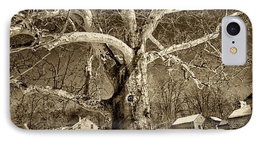 Sycamore Tree IPhone 7 Case featuring the photograph Lafayette Headquarters by Jack Paolini