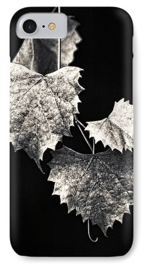 B&w IPhone 7 Case featuring the photograph Leaves by Christopher Holmes