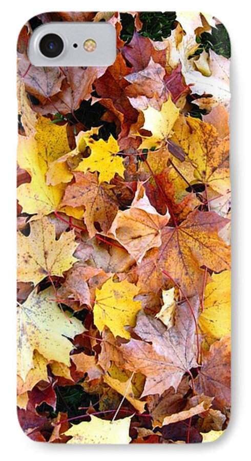 Leaves IPhone 7 Case featuring the photograph Leaves Of Fall by Rhonda Barrett