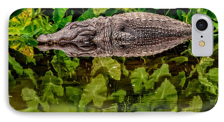 Alligator IPhone 7 Case featuring the photograph Let Sleeping Gators Lie by Christopher Holmes