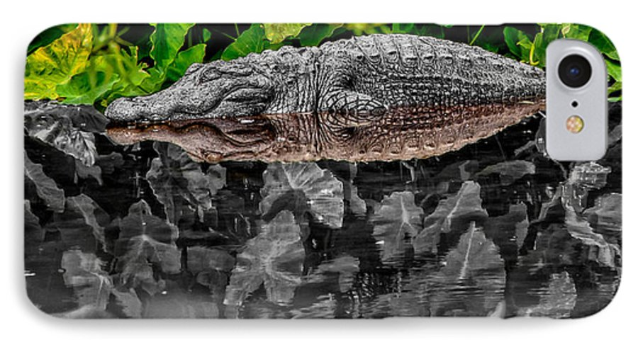 American IPhone 7 Case featuring the photograph Let Sleeping Gators Lie - Mod by Christopher Holmes