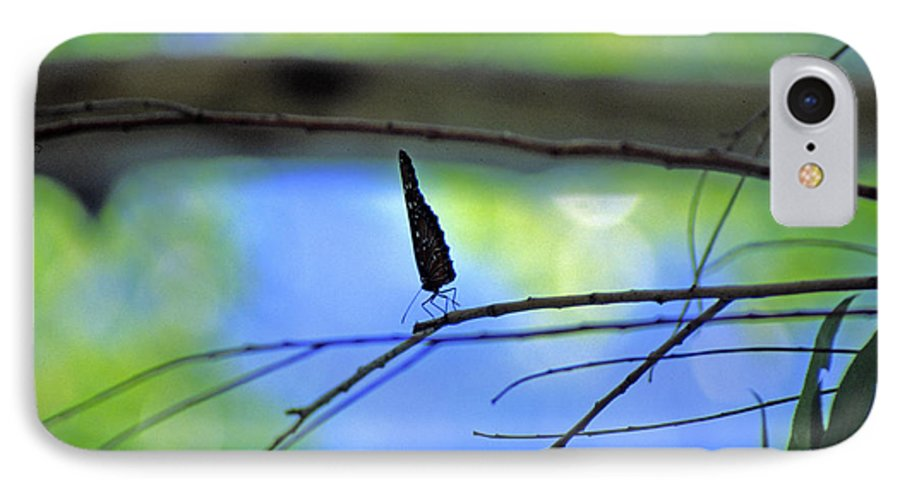Butterfly IPhone 7 Case featuring the photograph Life On The Edge by Randy Oberg