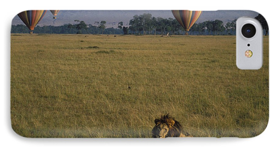Lion IPhone 7 Case featuring the photograph Lion Ignores Balloons by Carl Purcell