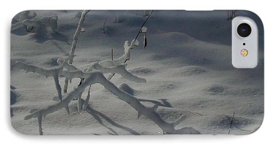 Loneliness IPhone 7 Case featuring the photograph Loneliness In The Cold by Douglas Barnett