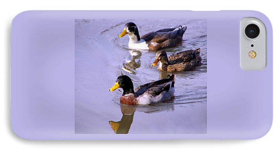 Duck IPhone 7 Case featuring the photograph Mallards by Kenna Westerman