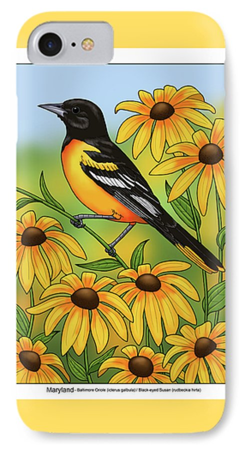 Bird IPhone 7 Case featuring the painting Maryland State Bird Oriole And Daisy Flower by Crista Forest